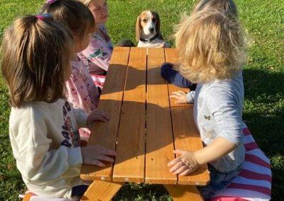 Obisk psičke Jacky